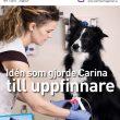 VeterinärMagazinet nr 1/2015