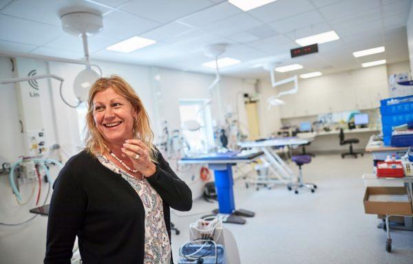 Metamorfosen klar för Lunds Djursjukhus