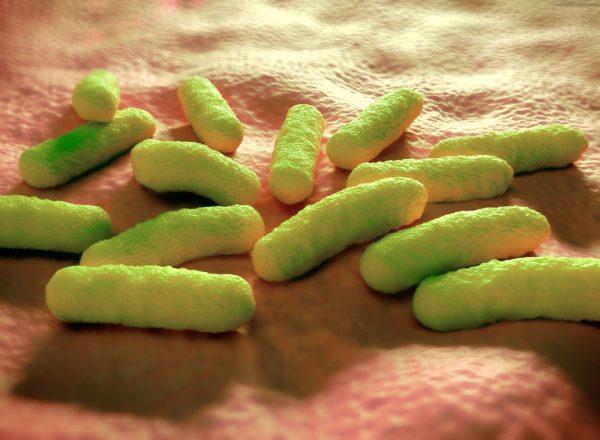 Nytt varningssystem för hälsofarliga livsmedel