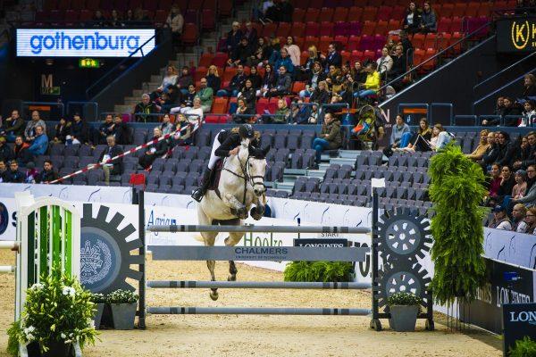 Ingenjörer bedriver banbrytande hästforskning