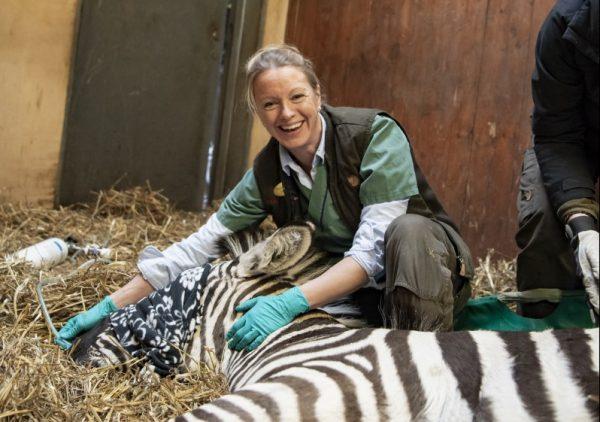 Okända djur ger goda forskningsidéer
