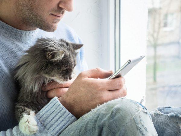 FirstVet erbjuder gratisbesök till alla djurägare