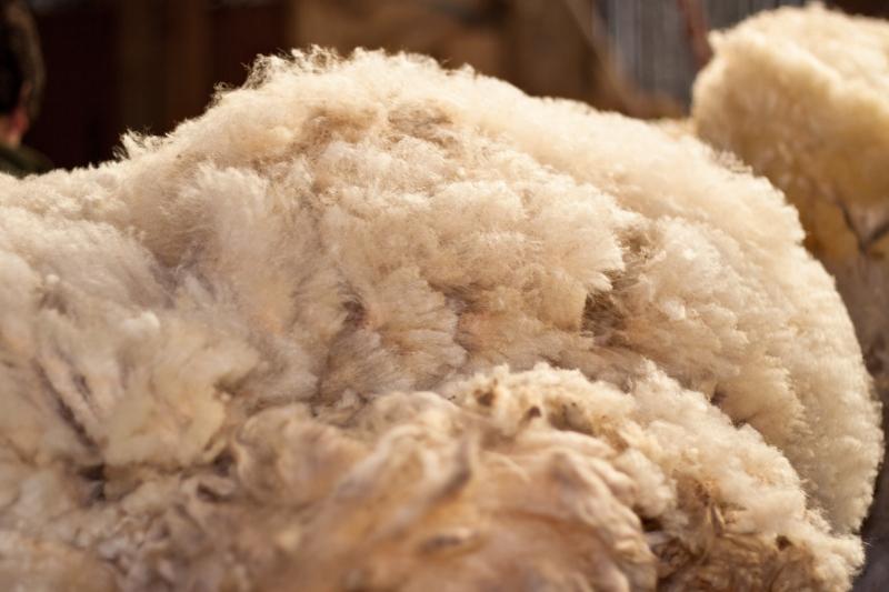 Nya enklare regler om djurprodukter