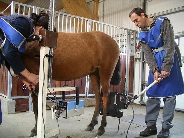 Spatt kan upptäckas innan hästen är halt