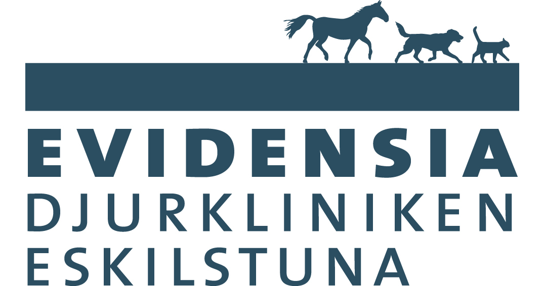 EVIDENSIA Eskilstuna_BLUE-RGB