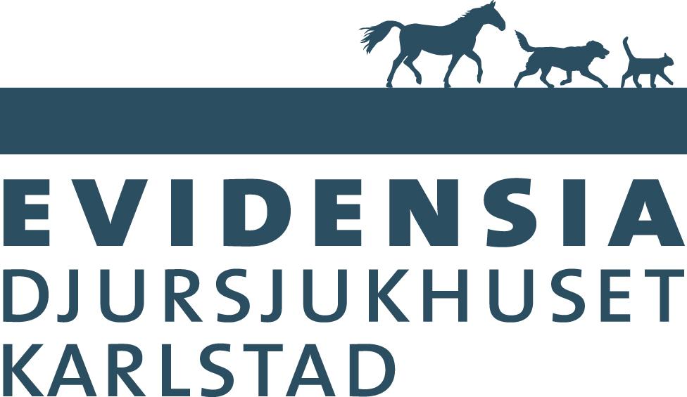 EVIDENSIA Karlstad_BLUE-CMYK.eps