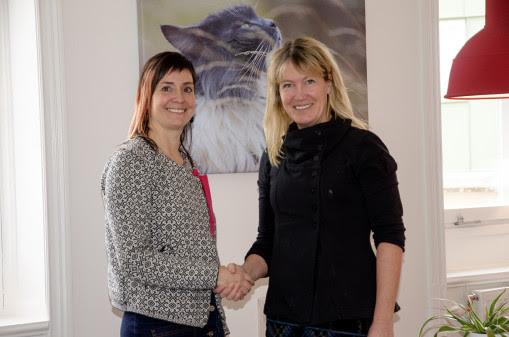 Därför sprack avtalet mellan Evidensia och Djurskyddet