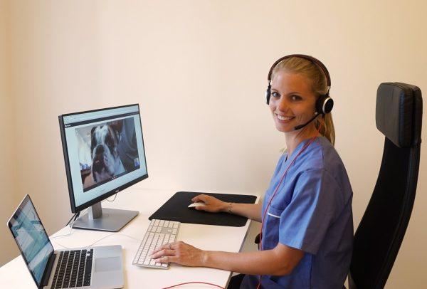 Snart startar första e-veterinärtjänsten