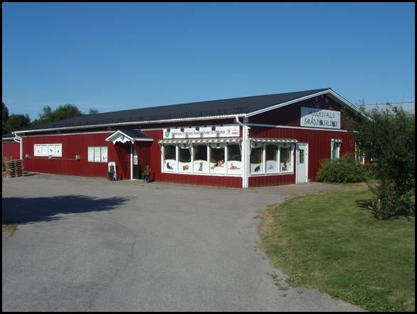 Hudiksvalls Smådjursklinik startar i Ljusdal