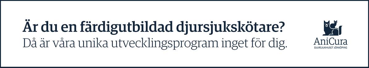 Anicura utvecklingsprogram djurskötare Jönköping