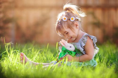 Kaniner behöver gulsotsvaccin